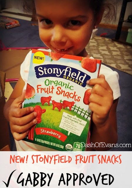 #StonyfieldBlogger, Fruit Snacks, Stonyfield, Dash of Evans