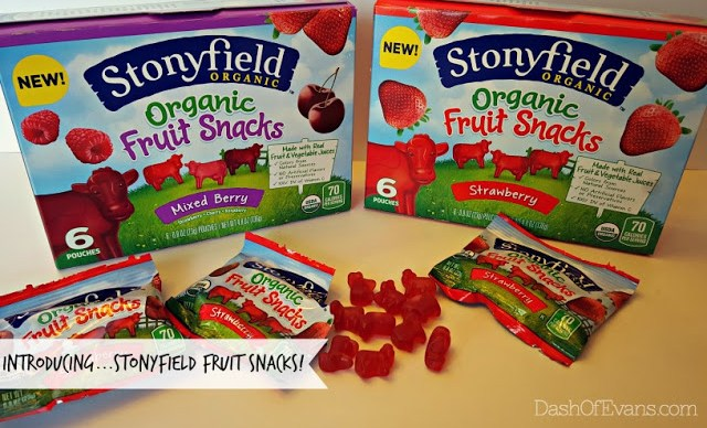 #StonyfieldBlogger, Fruit Snacks, Stonyfield, Dash of Evans