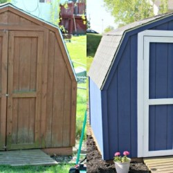 DIY Project: Our Shed Revamp!