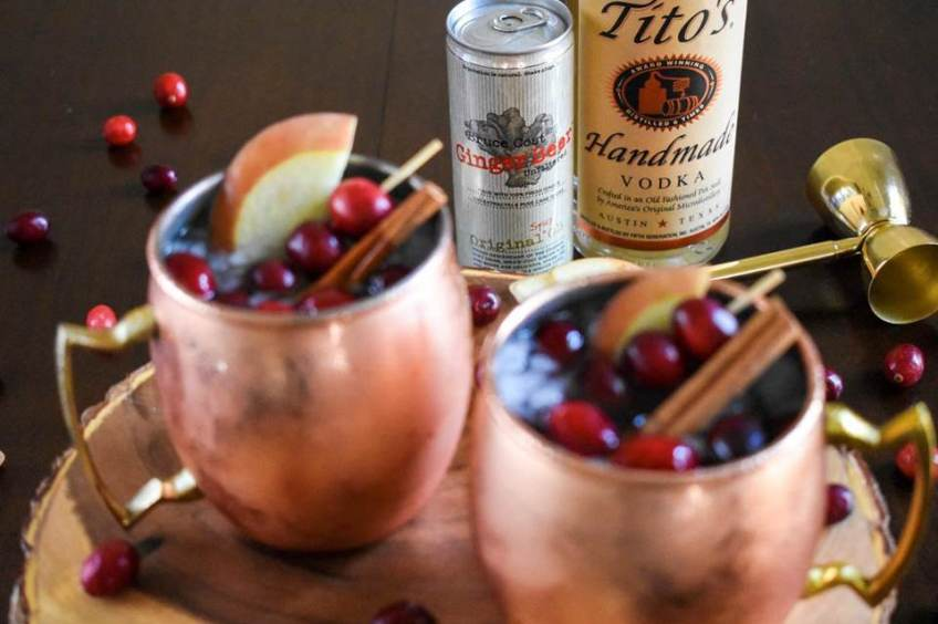 Cranberry Apple Spice Mules are perfect for Fall and any holiday gathering. They'll make you feel warm & fuzzy with just a few ingredients! Cocktail recipe by Dash of Jazz