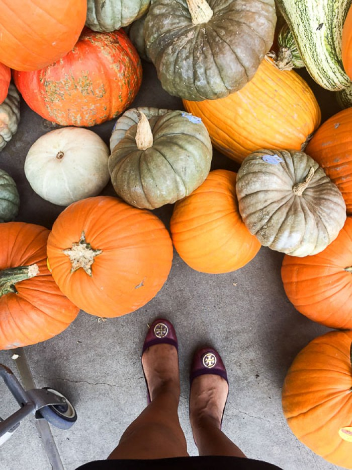 standing with pumpkins at my feet