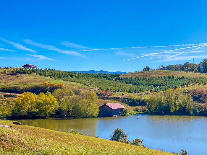 lake at Mercier Orchards