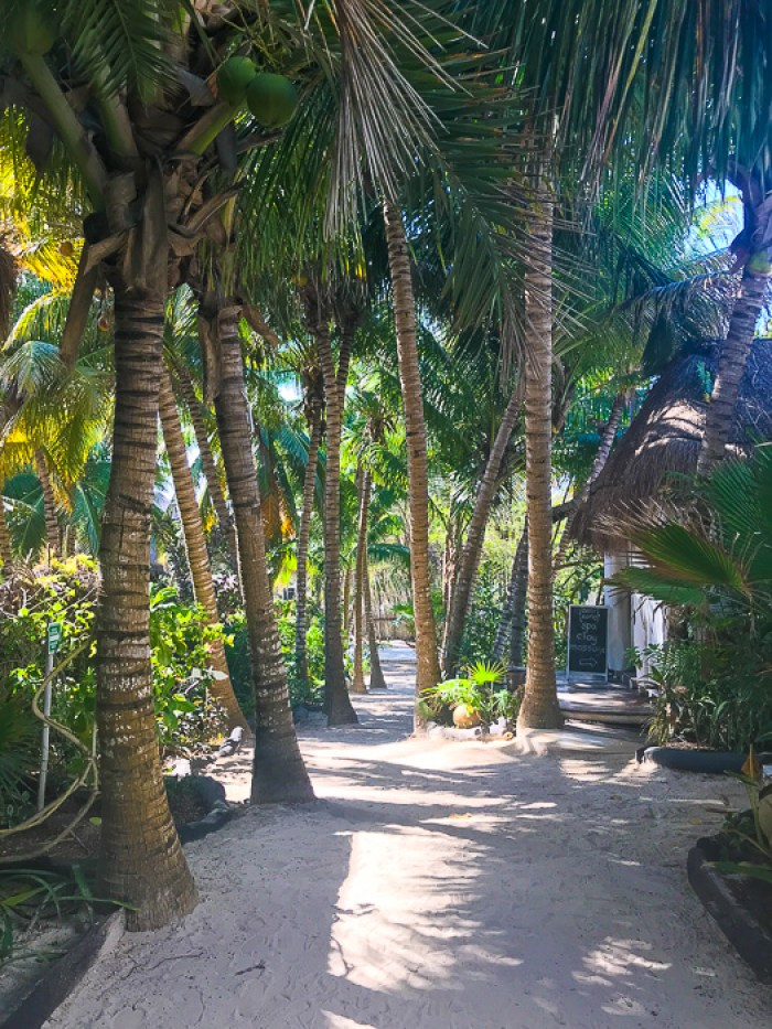 path to Coco Beach Club in Tulum