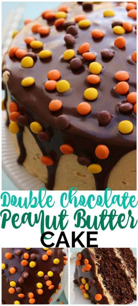Double Chocolate Peanut Butter Cake pinterest image
