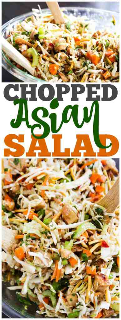 asian salad made with green cabbage, celery, carrots, green onion, cilantro and asian dressing