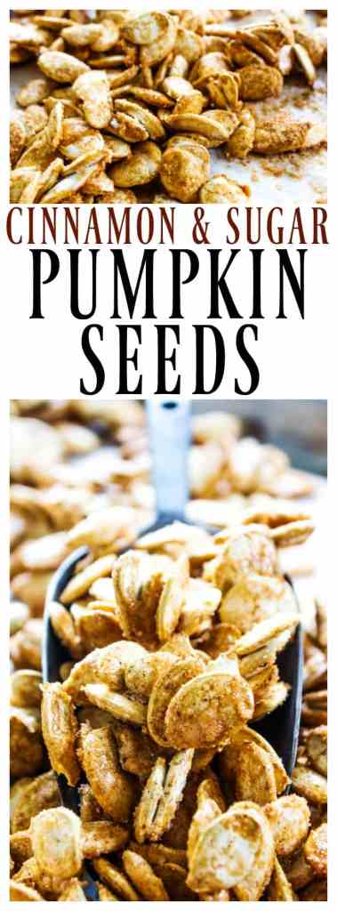 Oven baked CINNAMON SUGAR PUMPKIN SEEDS make a delicious fall treat in under an hour.