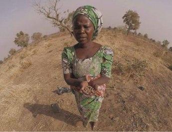 Daughters of Chibok