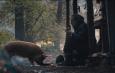 Pig recensione fim Nicolas Cage DassCinemag