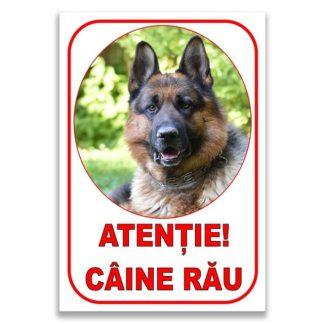ATENTIE CAINE RAU 2