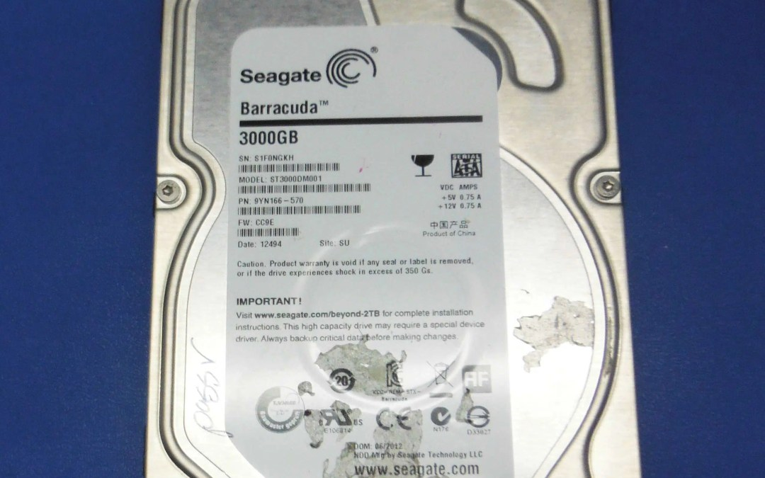 Seagate ST3000DM001 Data Loss Warning