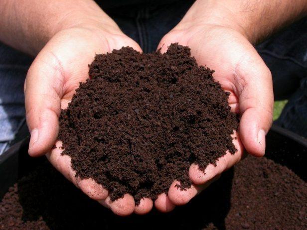 Mendapatkan Peluang Usaha Pupuk Kompos Yang Menguntungkan