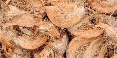 mengolah sabut kelapa