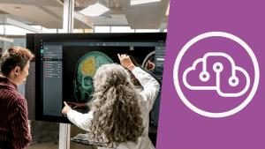 Microsoft Professional Program Capstone Artificial Intelligence