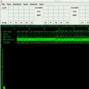 Data General Dasher Emulator