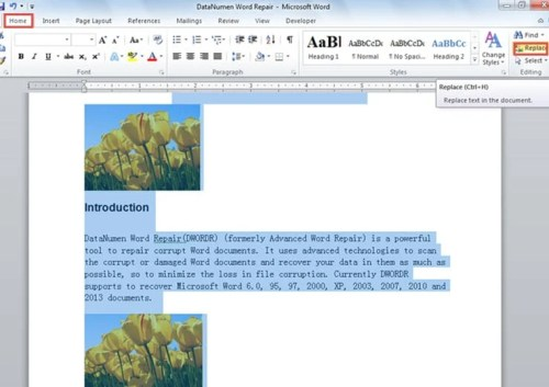 how to find and replace in multiple word documents
