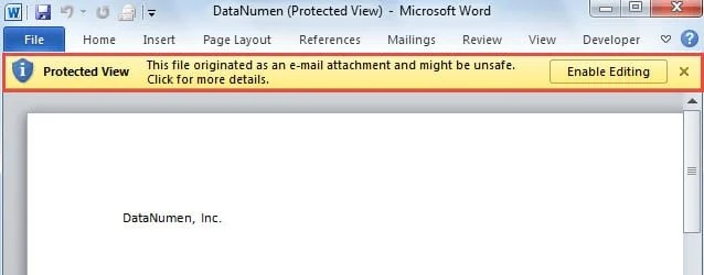 Protected View in MS Word