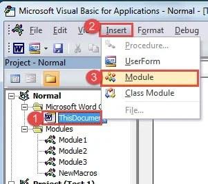 """Click """"ThisDocument"""" ->Click """"Insert"""" ->Click """"Module"""""""