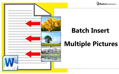 Batch Insert Multiple Pictures to Your Word Document