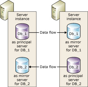 Mirrored Databases