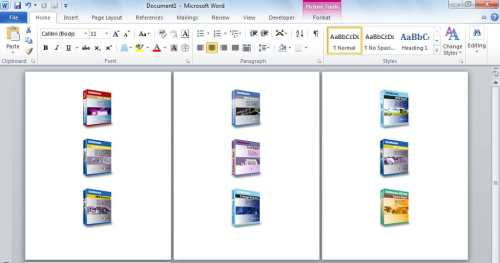 Export Images in Word Document