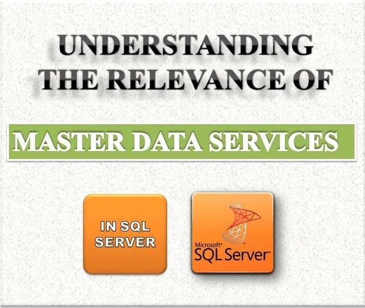 Understanding The Relevance Of Master Data Services