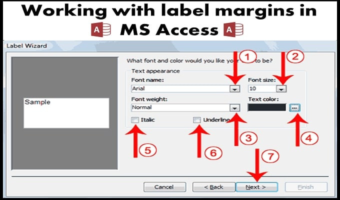 Working With Label Margins In MS Access