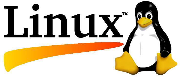 Linux Ubuntu scuola : migliaia di euro di vantaggi