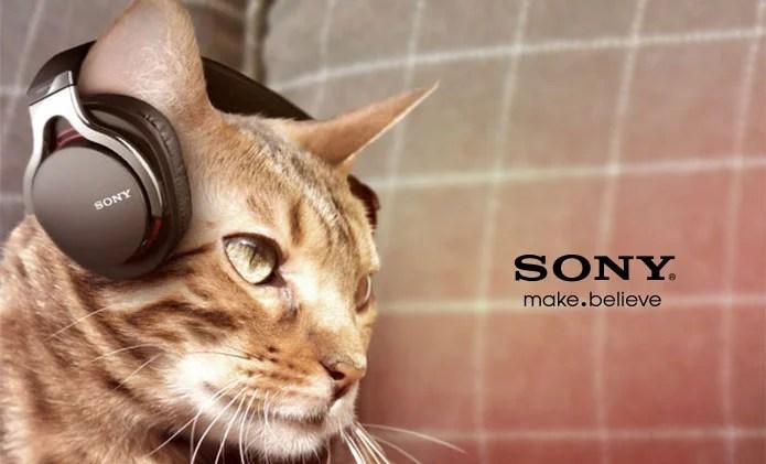 Sony Animalia line of products