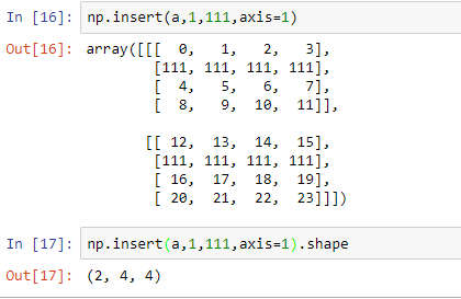 insertion of array in the axis 1