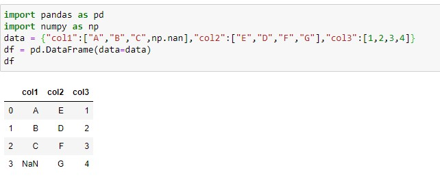 Sample Dataftame with NaN value