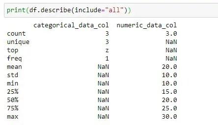Applying Pandas Describe method on Whole Dataframe