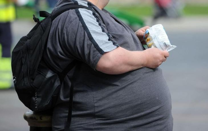 Obesity-Causing-High-Fructose-In-The-Diet-Study-Shows-1