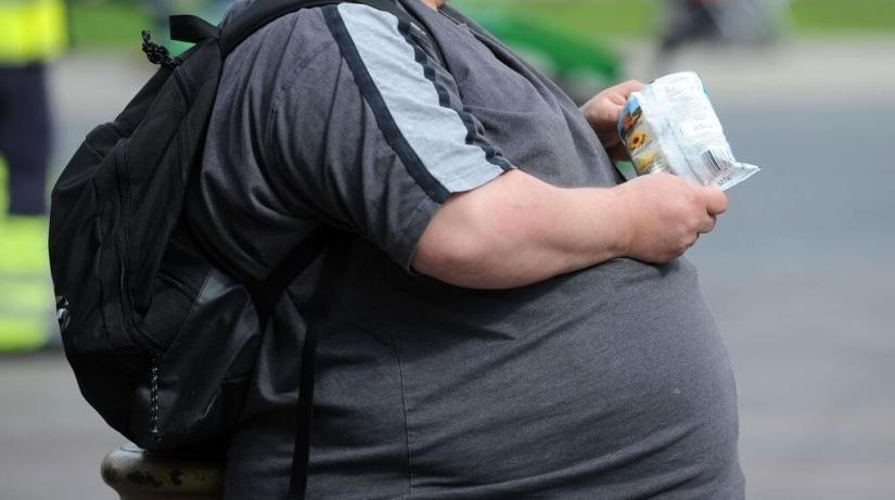 Obesity-Causing High Fructose In The Diet, Study Shows