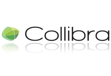 Collibra Releases New Data Governance Solution for