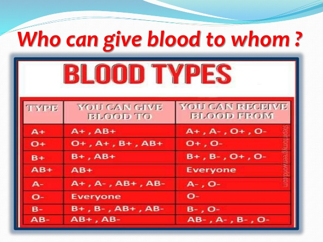 Blood Type Dating - Date By Type