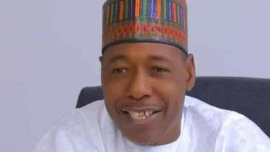 Photo of Borno: In Zulum's shoes, what else would you do?