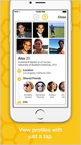 bee themed gay dating app