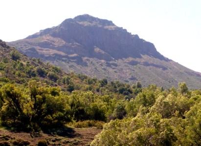 Trekking de ascensión cerro El Durazno