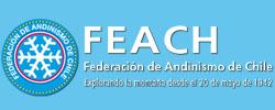Obtención Credencial / Licencia Federación 2019