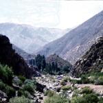 Aconcagua019