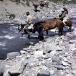 Aconcagua194
