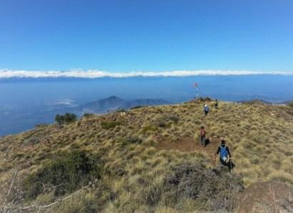 Cerro Bustamante (10 de junio de 2017)