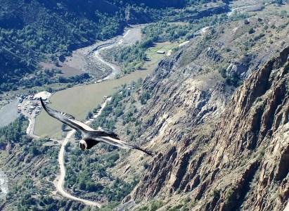 -Trekking Fotográfico Mirador de Los Cóndores – 30 de Septiembre