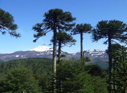 Trekking en la región de la Araucanía 27 al 31 de Enero 2018.