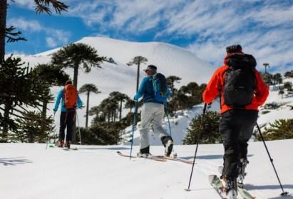 Salida Randonnée: Ascenso en Ski Volcán Llaima, región de la Araucanía – 29 y 30 de septiembre