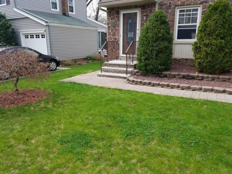 front_yard7