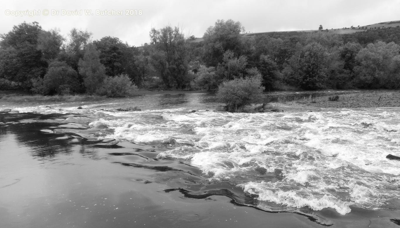 River Tweed rapids near Melrose