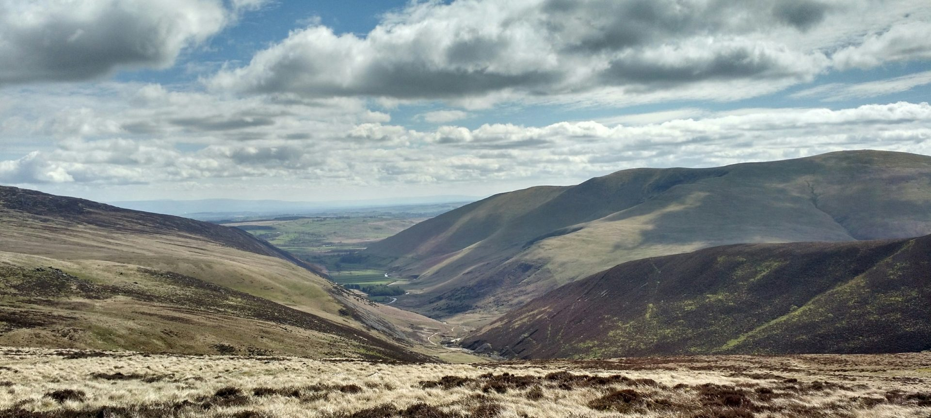 View East from Great Lingy Hill, Caldbeck