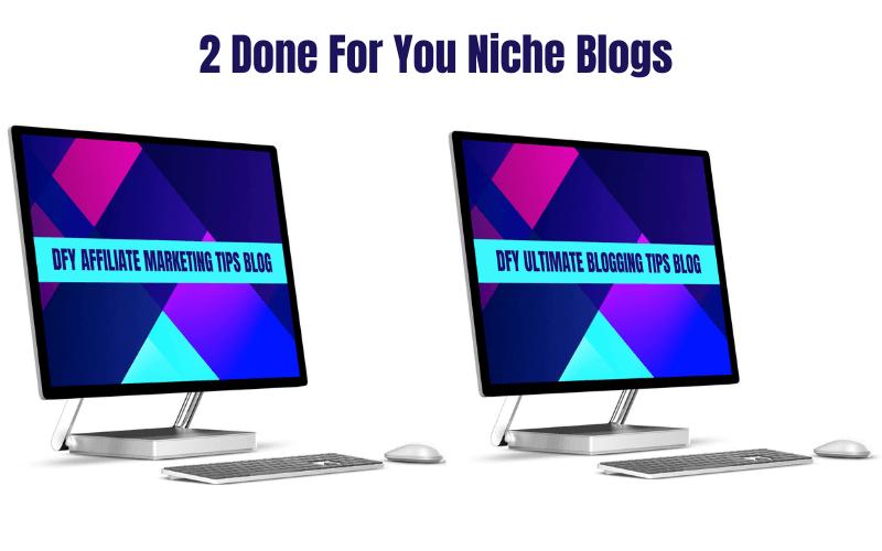 2 DFY Niche Blogs