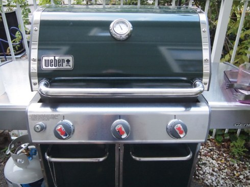 weber gas grill plank cooking